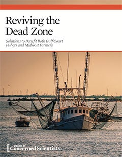 Cover of 2020 UCS report, Reviving the Dead Zone