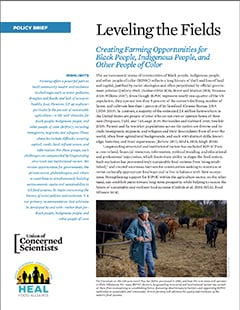 Cover of Leveling the Fields fact sheet