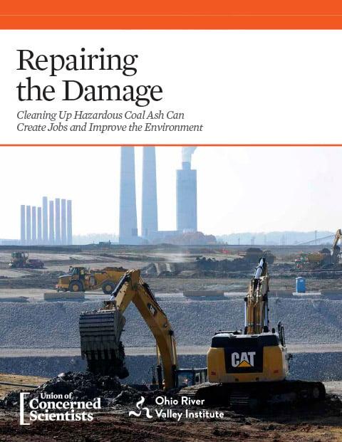 Repairing the damage report cover image