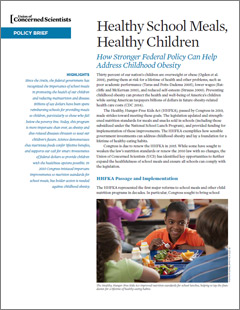 School food issues essay help?