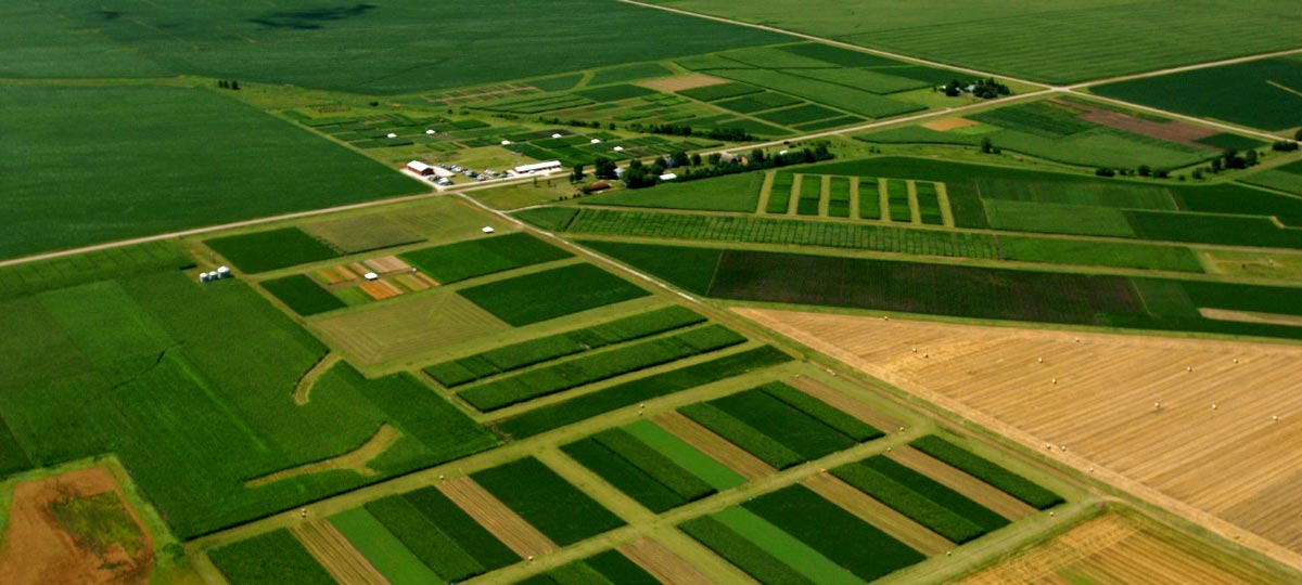 Healthy Farm Practices Crop Rotation And Diversity