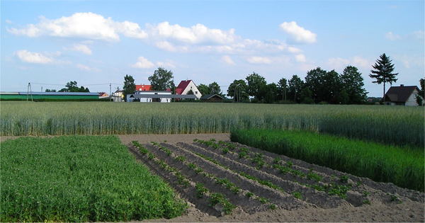 Healthy Farm Practices Crop Rotation And Diversity Union Of