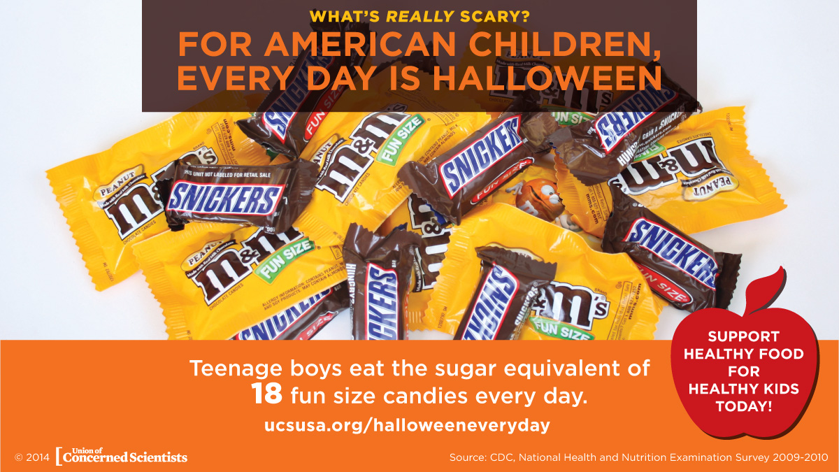 Halloween Sugar Infographic