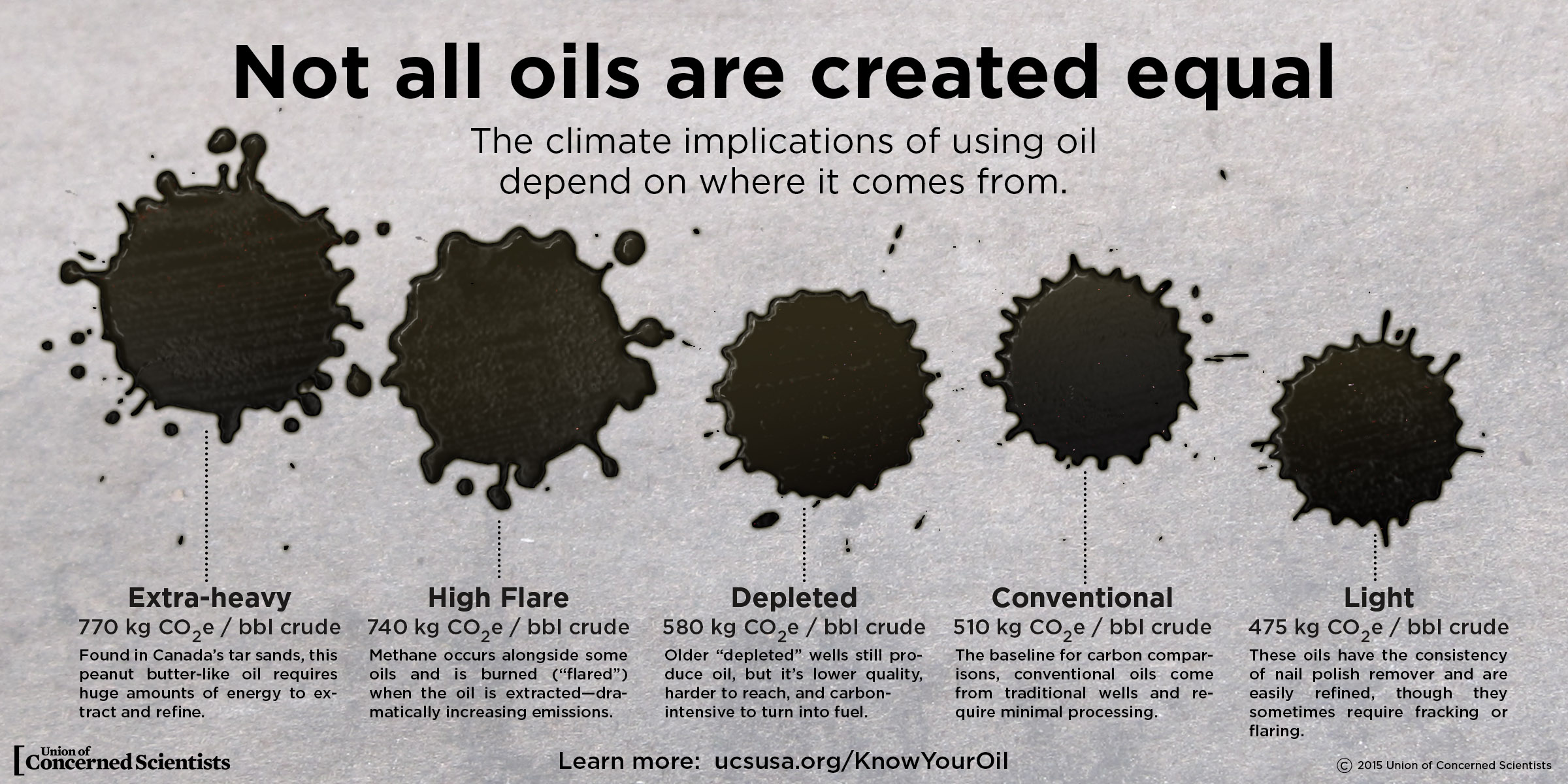 Infographic Oils Aren T Created Equal Union Of