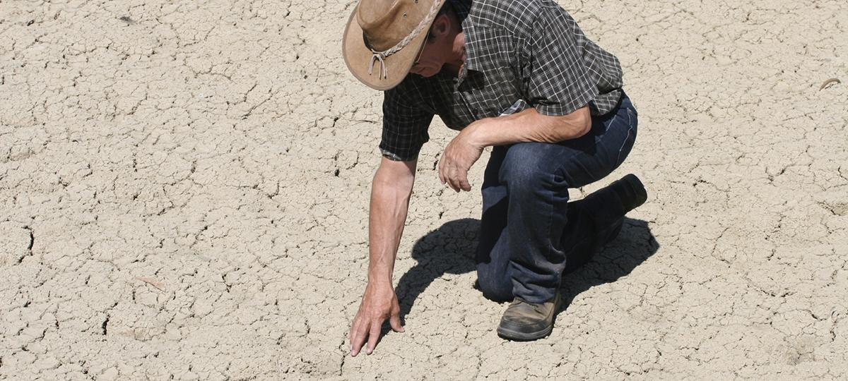 man looking at dry ground