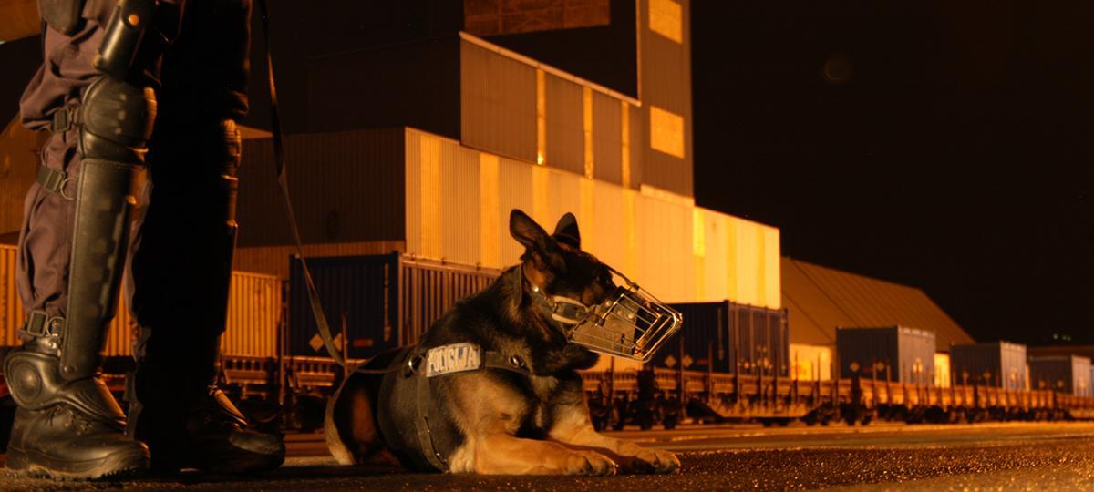 Police guarding sensitive nuclear materials.