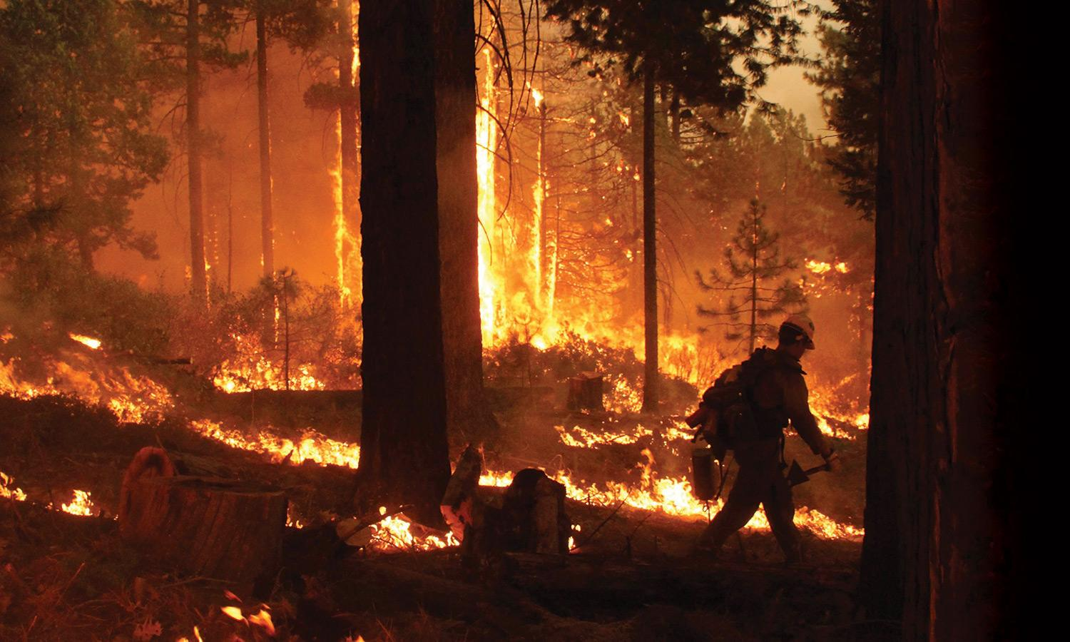 Firefighter walking, surrounded by blazing wildfire
