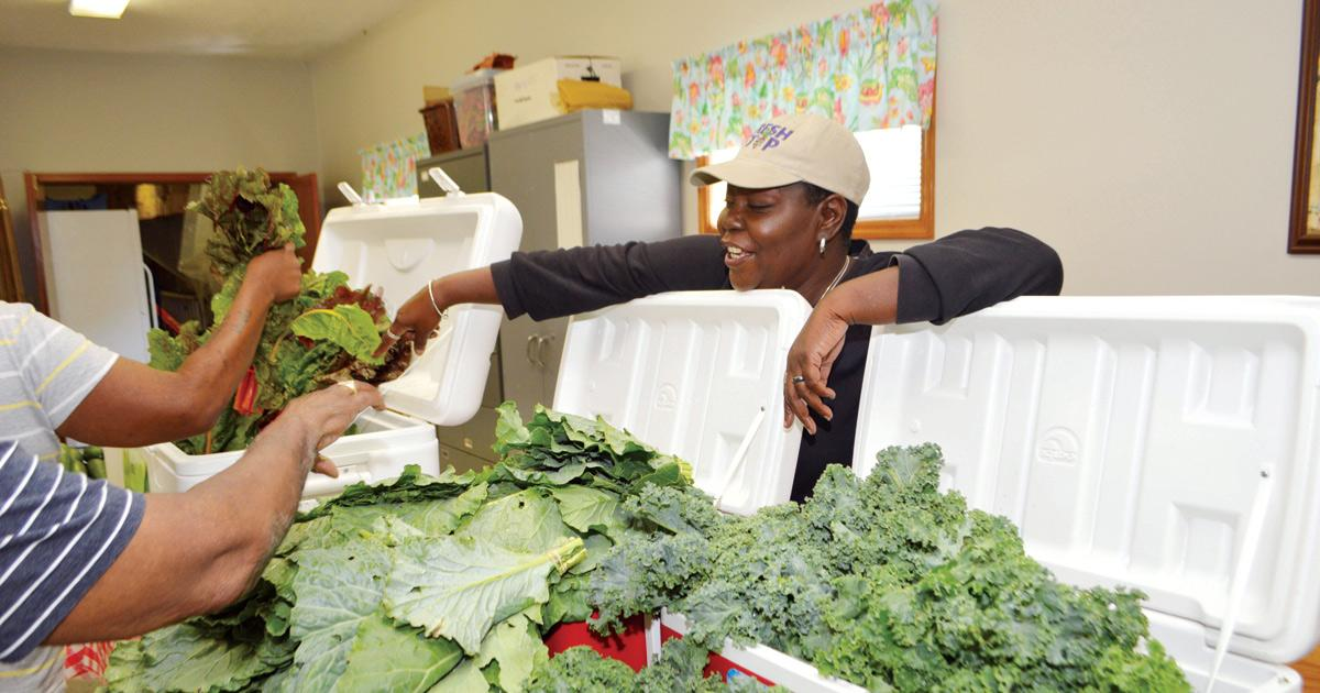 Providing healthy food to those in need