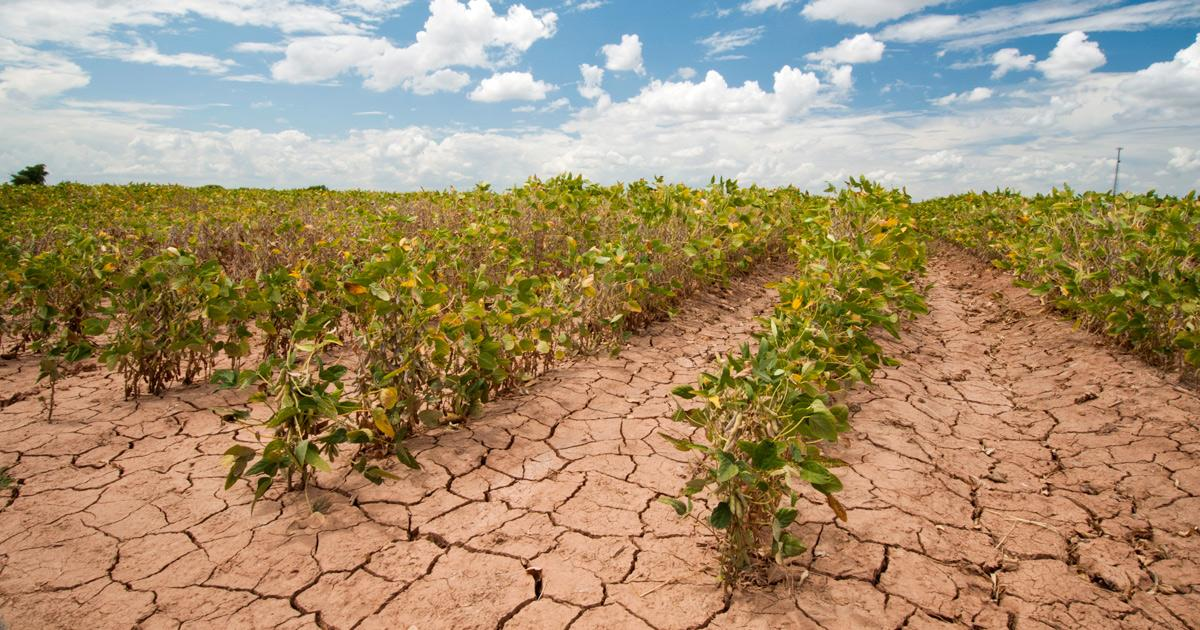 Climate Change And Agriculture Union Of Concerned Scientists
