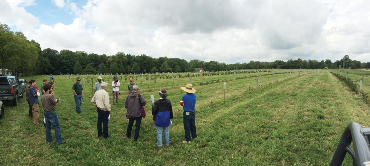 Local farmers attending a field day at a research farm in Illinois