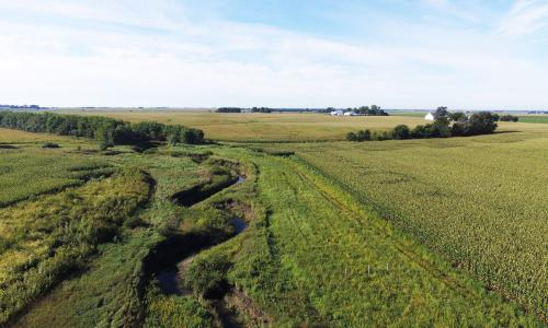 Saturated buffer in Story County, Iowa