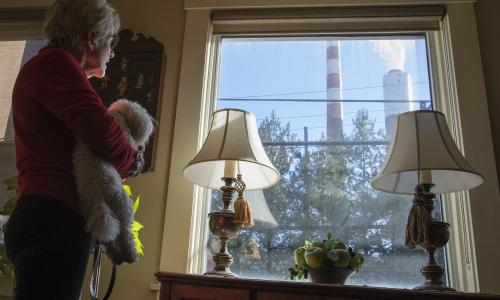 Woman and her dog look out the window at emissions from an industrial plant.