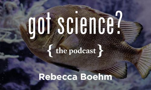 Got Science? The Podcast - Rebecca Boehm