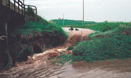 Runoff from an Iowa farm pouring into a stream